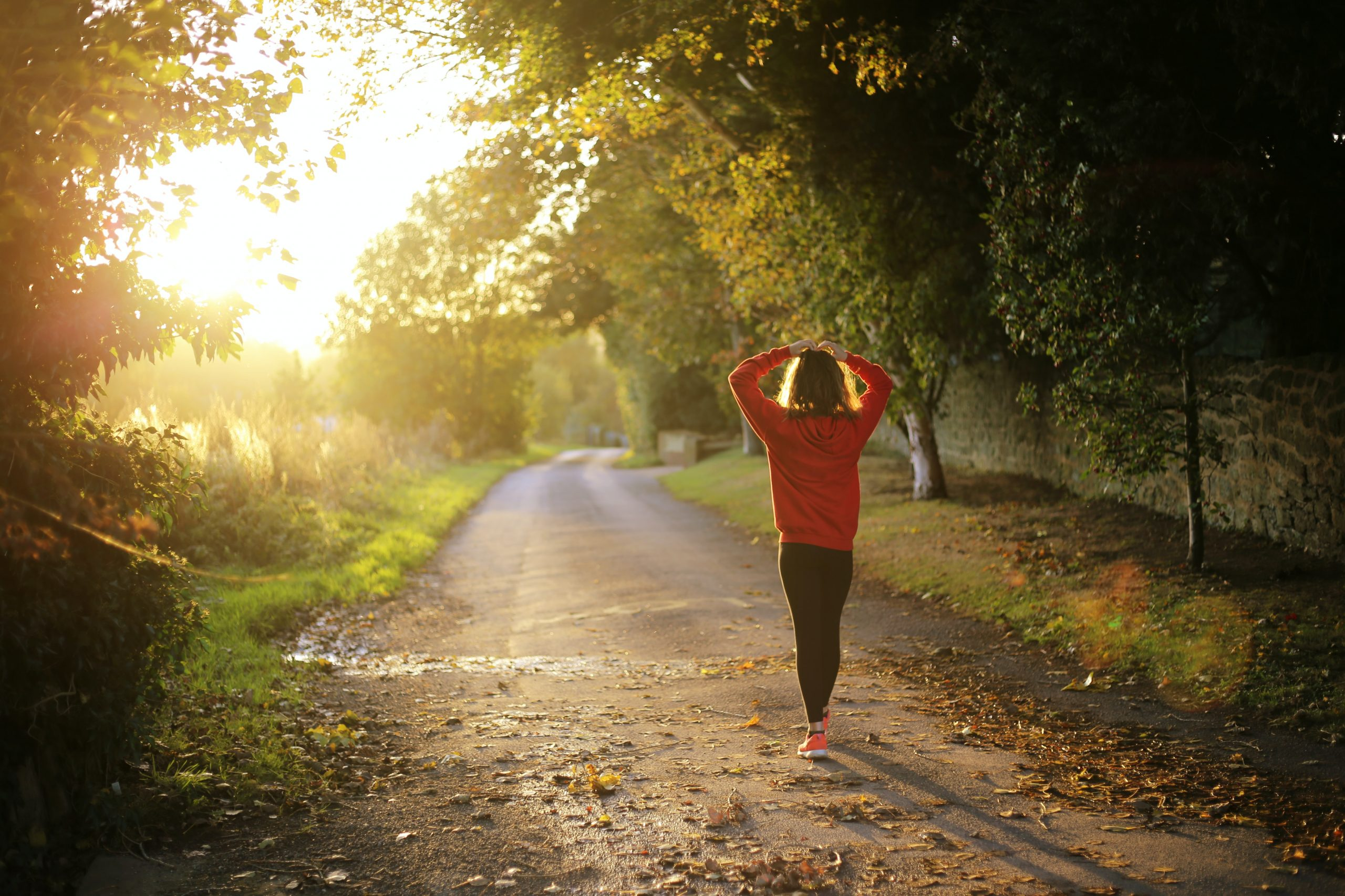 A woman running along a road in the morning, surrounded by foliage